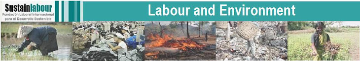 Labour and Environment