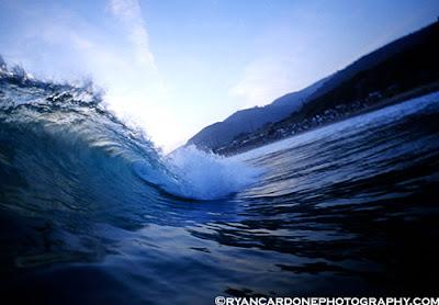 wave surf cardone