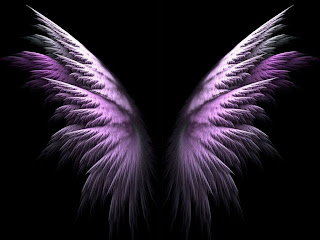 Pink Wings wallpaper