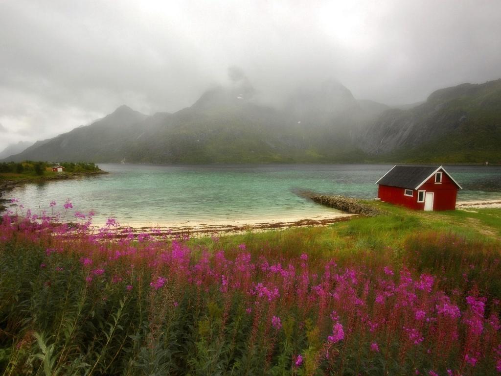http://4.bp.blogspot.com/_Ym3du2sG3R4/S7xCoV_A6rI/AAAAAAAAB9M/iM5FsJAq-TA/s1600/flowers-and-lake-wallpaper.jpg
