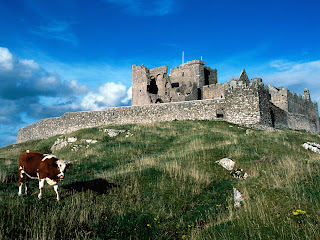 Cashel Castle in Ireland wallpaper