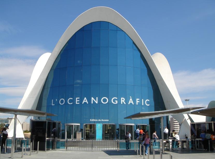 Diez de campo valencia viaje de estudios 2010 for Oceanografic valencia