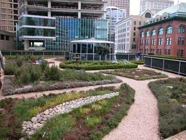 Landscape Urbanism From The Rooftop Varietals