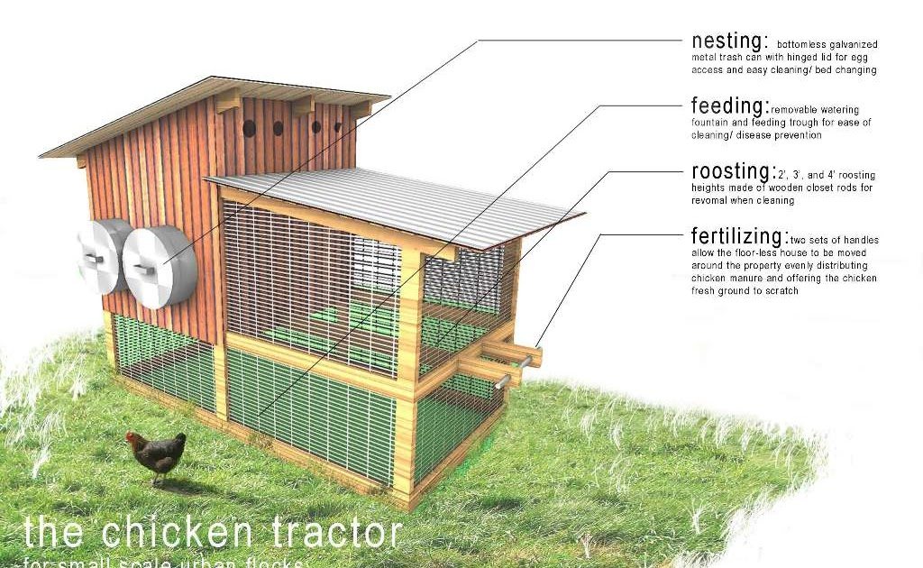 Laying hen coop design Learn how ~ Build small chicken coop Raising Chickens
