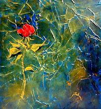 Una Rosa / Une rose - Jicé