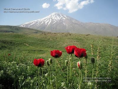 Mount Damawand Iran