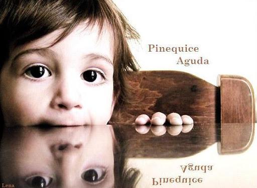 Pinequice Aguda