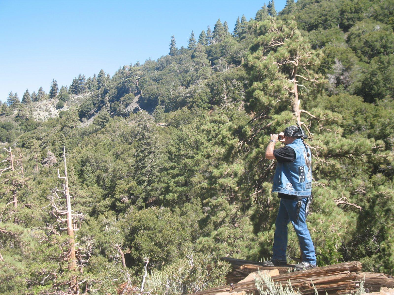 http://4.bp.blogspot.com/_YsDJM_vC5MM/THC8YWa8q1I/AAAAAAAAAUk/XoM0lBuVzpQ/s1600/Pastor+Denver+taking+a+pic.JPG