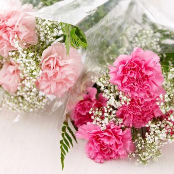 diy wedding bouquet carnations wedding cabaret budget friendly diy carnation bouquet