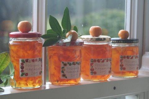 [Marmalade]