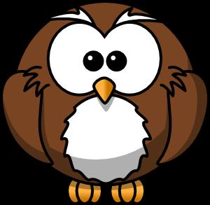 foto hewan - gambar animasi burung hantu