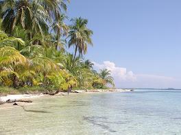 Plage de Green island