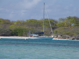 Fidji dans l'eau translucide de Petite Terre!
