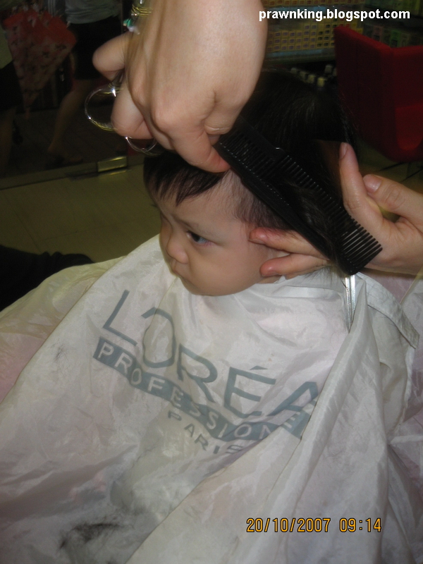 [hair04.jpg]