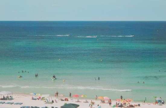 The Large Panama City Beach