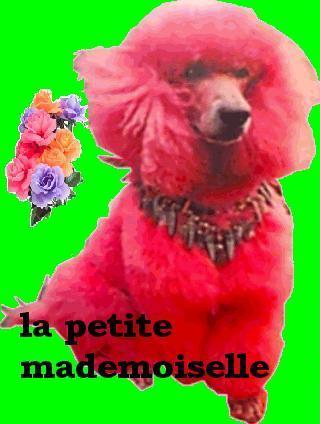 la petite mademoiselle
