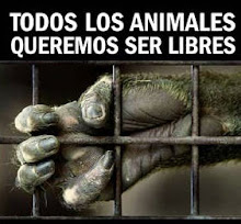 TODOS LOS ANIMALES