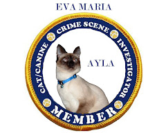 CCSI IV Cast Member