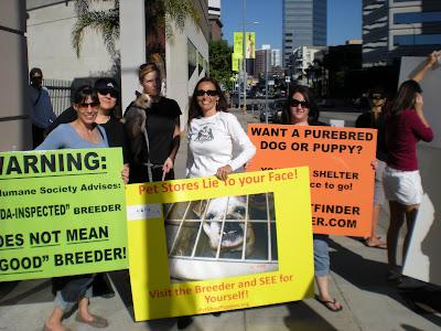 pet store protest