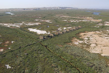 Ruinas Deposito Militar