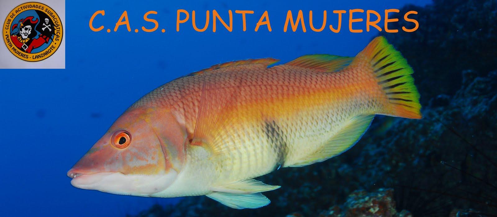 C.A.S. PUNTA MUJERES