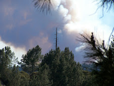 Taken from my deck in Ben Lomond. Our home backs up to where the Quail Hollow fire was a week or so