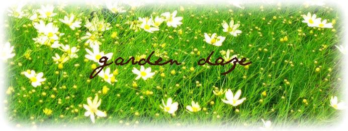 garden daze