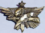 Senior Tactical Operator Badge