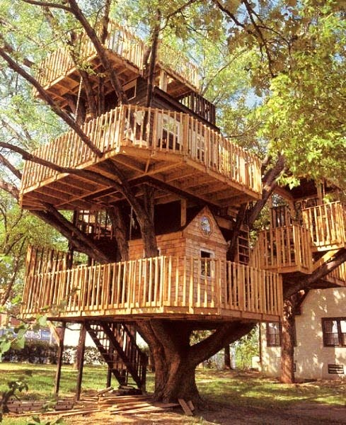 journey of the featherless real life treehouses