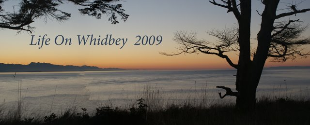 Life on Whidbey