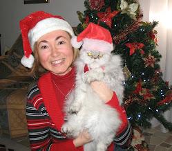 Natale Anno 2010