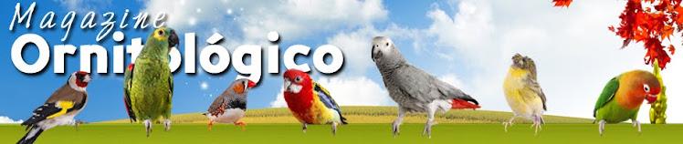 Magazine Ornitológico