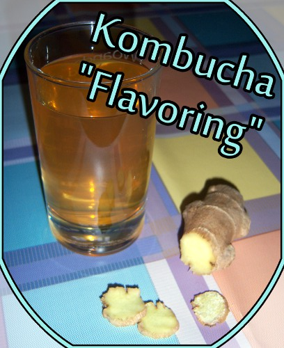 kathrins blog kombucha flavoring mit ingwer. Black Bedroom Furniture Sets. Home Design Ideas