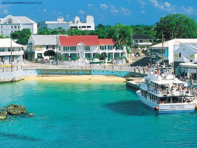 Happy New Year, hope to see you in warm and sunny Cayman Islands this year -image 2