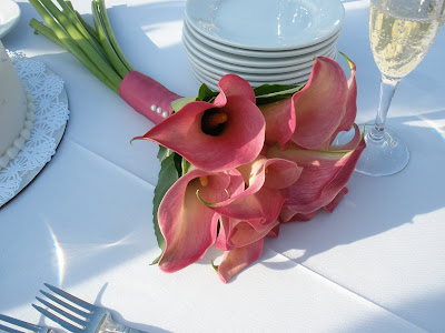 Grand Cayman Marriott Beach Wedding for Residents - image 8