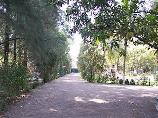 The Walkway in Pinewood resort