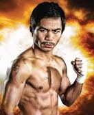 Pacquiao vs Cotto Online Live Streaming, Paquiao Cotto 24/7, Pacquiao vs Cotto News and Updates