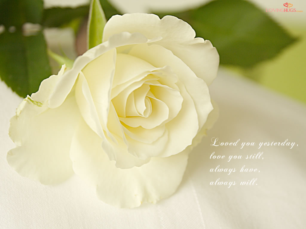 http://4.bp.blogspot.com/_ZA98UJtvumo/TDbSveuuZ_I/AAAAAAAAAWw/OxA9CePX8cg/s1600/love-wallpaper33.jpg