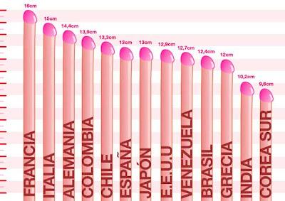 penes según su forma el pene posee distintos tamaños formas