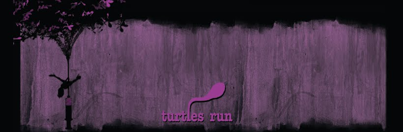 Turtles Run