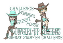 yay - I won the cowgirl challenge - yay