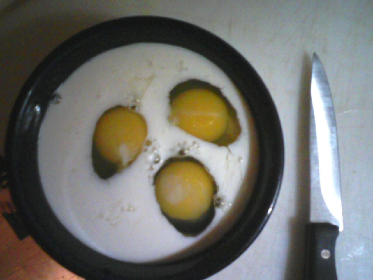 http://4.bp.blogspot.com/_ZDxIdEWPzUU/TS4bdcaOA0I/AAAAAAAAAR4/gSBKiNgP3_c/s1600/eggsmilk.jpg