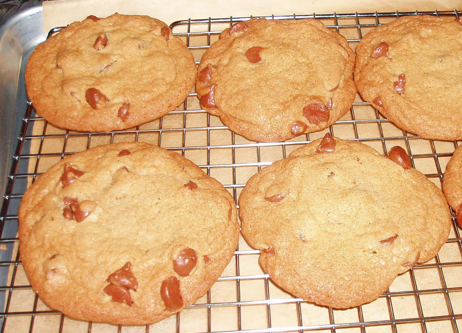 The Pastry Chef's Baking: Best Big Fat Chewy Chocolate Chip Cookies