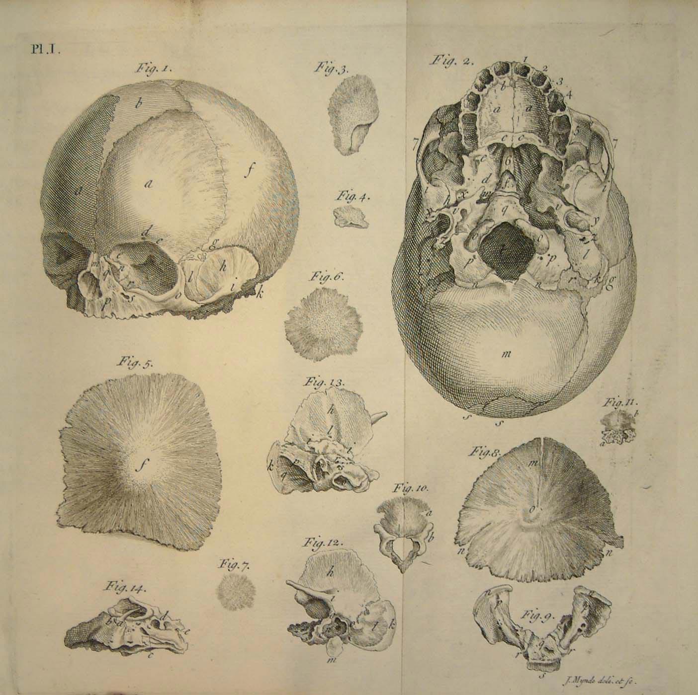 [13-m263-skull-image_hi.jpg]