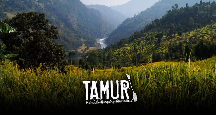 TAMUR: Kangchenjungako harribitxia