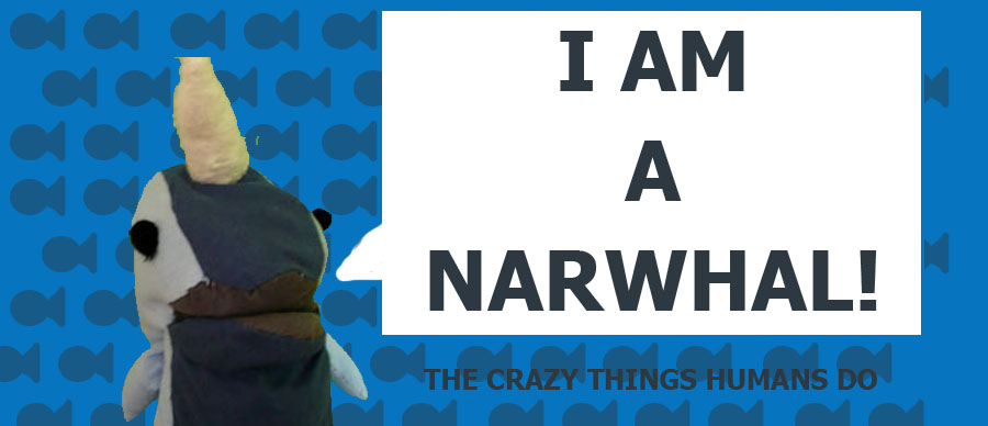 I'm a Narwhal!