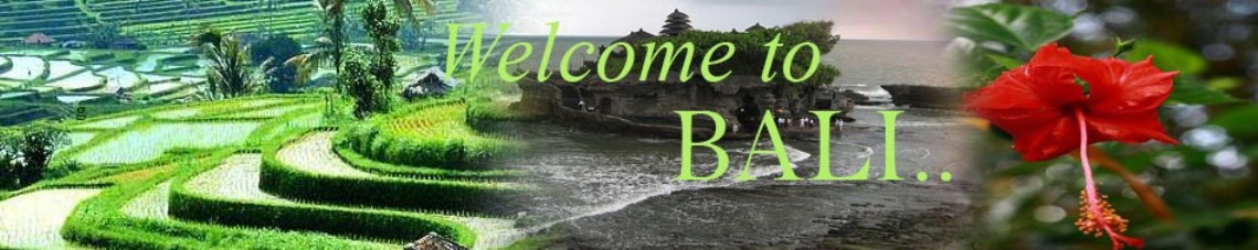 Bali Private Driver And Tour Guide In Bali
