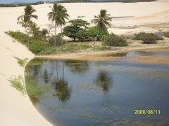 Oásis nas dunas do Cumbe
