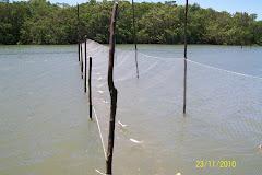 Pescaria no rio Jaguaribe