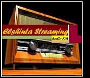 Elshinta Streaming